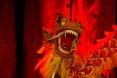 Testa del drago. Nuovo anno cinese 2013. Dublino. Fotografia Stock