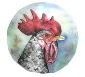 Testa del gallo dell'acquerello con il pettine rosso illustrazione vettoriale