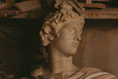 Testa del gesso di Apollo Belvedere fotografie stock libere da diritti