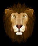 Testa del leone Immagine Stock