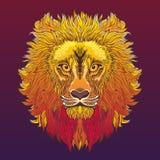 Testa del leone Illustrazione di vettore nello stile etnico Immagini Stock