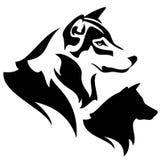 Testa del lupo Fotografia Stock