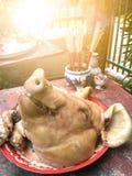 Testa del maiale Fotografia Stock