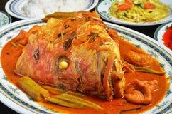 Testa del pesce del curry immagini stock