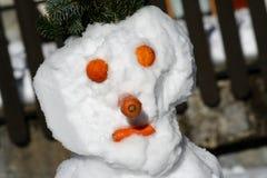 Testa del pupazzo di neve Fotografia Stock