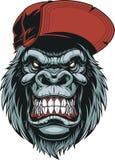 Testa del ` s della scimmia in un berretto da baseball Fotografie Stock Libere da Diritti