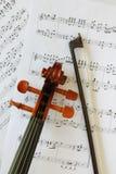 Testa del violino Immagini Stock