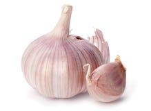 Testa dell'aglio fotografia stock