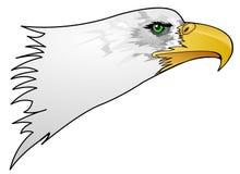 Testa dell'aquila illustrazione vettoriale