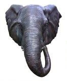 Testa dell'elefante Immagine Stock Libera da Diritti