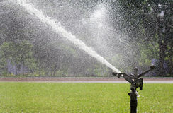 Testa dell'irrigatore che innaffia il prato inglese Immagini Stock