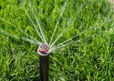 Testa dell'irrigatore del prato inglese Fotografie Stock Libere da Diritti