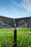 Testa dell'irrigatore del prato inglese Fotografia Stock Libera da Diritti