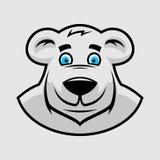 Testa dell'orso del fumetto illustrazione di stock