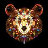 Testa dell'orso grigio nel modello geomeyric Immagini Stock Libere da Diritti