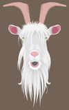 Testa della capra Fotografie Stock