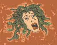 Testa della medusa illustrazione di stock
