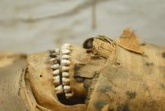 Testa della mummia immagini stock libere da diritti