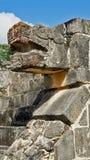 Testa della pietra del serpente nella giungla di Yucatan Fotografia Stock Libera da Diritti