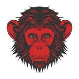 Testa della scimmia royalty illustrazione gratis