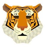 Testa della tigre di Bigcat Immagine Stock