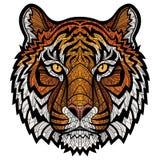 Testa della tigre isolata Fotografie Stock Libere da Diritti