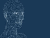 testa delle donne 3d sui precedenti blu Fotografia Stock Libera da Diritti