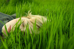 Testa delle ragazze nell'erba Fotografie Stock Libere da Diritti
