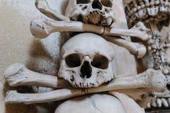 Testa dello scheletro fotografie stock