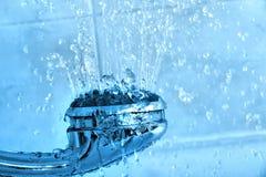 Testa di acquazzone Fotografia Stock