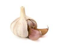 Testa di aglio Fotografia Stock