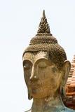 Testa di Buddha al parco storico di Ayutthaya Fotografia Stock