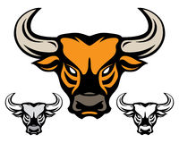 Testa di Bull Immagine Stock