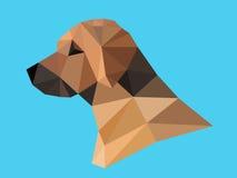 Testa di cane Fotografie Stock Libere da Diritti