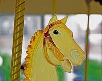 Testa di cavallo del carosello Immagine Stock