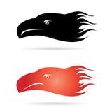 Testa di Eagle Immagini Stock