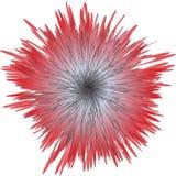 Testa di fiore Immagini Stock