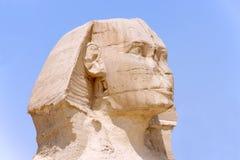 Testa di grande Sphinx Giza in 2009 Fotografia Stock Libera da Diritti