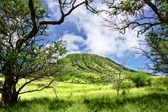 Testa di Koko su Oahu, Hawai Fotografia Stock