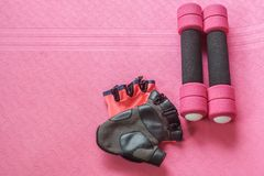Testa di legno di allenamento rosa delle donne e stuoia stabilite di yoga con i guanti di forma fisica Fotografia Stock Libera da Diritti