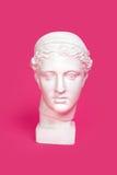 Testa di marmo della giovane donna, busto della dea del greco antico isolato su fondo rosa fotografie stock