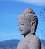 Testa di pietra del Buddha nel profilo vicino Fotografie Stock