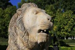 Testa di pietra del leone nel parco di Maria Luisa in Siviglia Immagini Stock