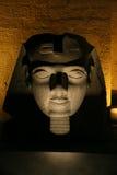 Testa di Ramses alla notte Fotografia Stock Libera da Diritti