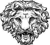 Testa di ringhio del leone Immagini Stock Libere da Diritti