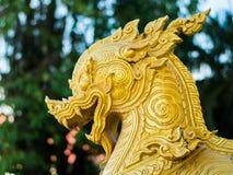 Testa di singha dell'oro con fondo Fotografia Stock
