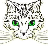 Testa di un gatto con le basette lunghe Fotografie Stock Libere da Diritti
