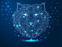 Testa di un lupo, cacciatore, animale Illustrazione poligonale astratta su fondo blu scuro con le stelle con le forme di destruct immagine stock libera da diritti