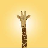 Testa di una giraffa Illustrazione Vettoriale