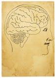 Testa di vecchio stile ed illustrazione del cervello Illustrazione Vettoriale